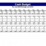 Screenshot of the Cash Budget Template