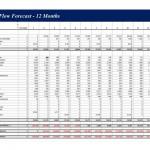 Cash Flow Forecast screenshot