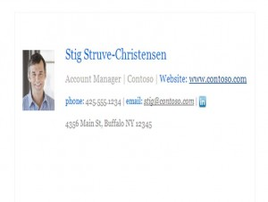 Screenshot of the Corporate Email Signature Template