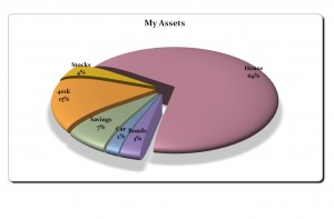 Photo of the Pie Chart Template