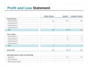 Screenshot of the Profit and Loss Statement