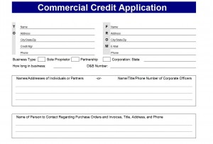 Credit Lication Form Screenshot