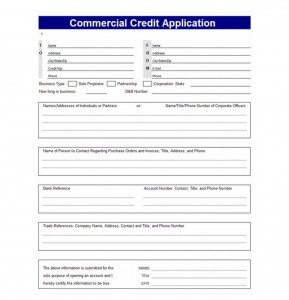 Credit Application Template screenshot