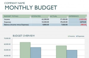 Microsoft Monthly Business Budget Template