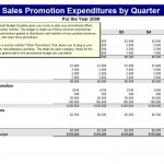 Downloadable Promotional Budget Template
