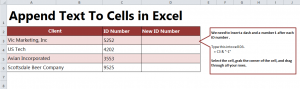 Formula for Appending Text in Excel