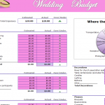 Perfect Wedding Day Budget