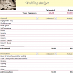 Perfect Wedding Budget Planner