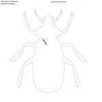 Halloween Pumpkin Carving Template Beetle