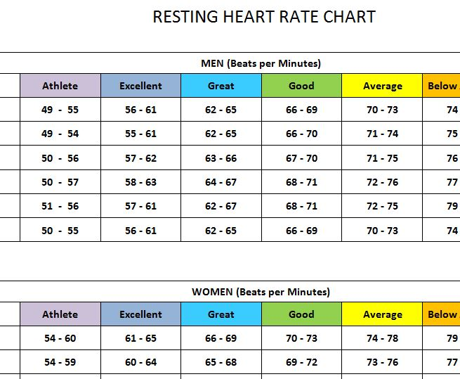 Heart Rate Chart Images  Reverse Search