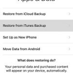 How to Transfer Data from Your Previous iPhone to Your New iPhone 7 Using iTunes