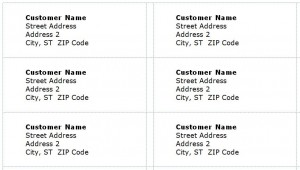 Screenshot of the Mailing Label Template