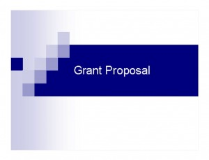 Screenshot of the Grant Proposal Template