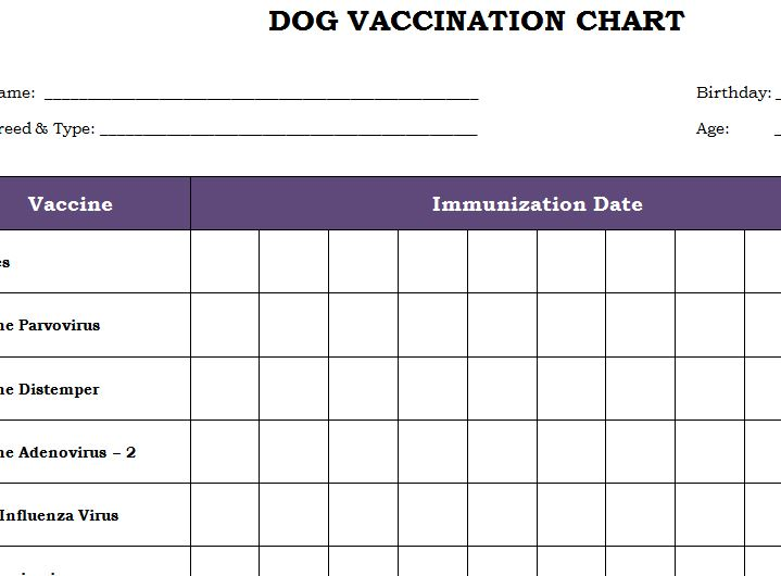 puppies shots chart puppy vaccination schedule pdf exploredogs com 2521