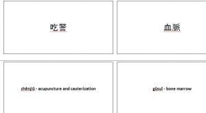 Chinese Terms Flash Cards