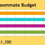 College Roommate Budget